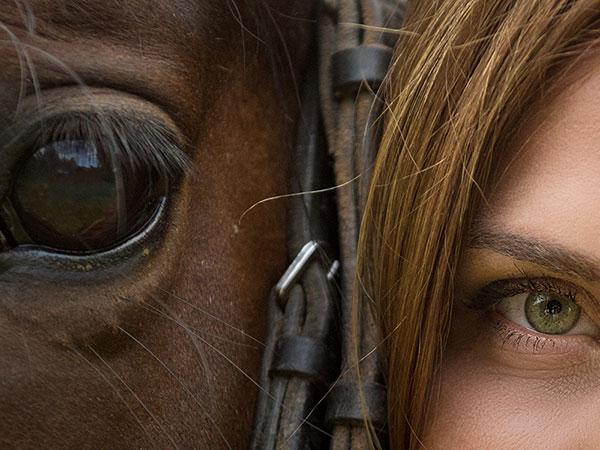 Tierkommunikation mit Pferden. Pferdeauge und Frauenauge eng beeinander.